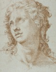 Bartolomeo Passarotti (1529–1592): Head of a figure, 1560– 70, pen and brown ink on blue paper, 33.7 x 26.0 cm, Prado, Madrid